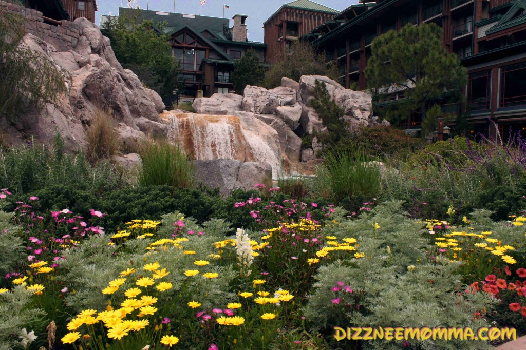 A Wilderness Lodge Spring